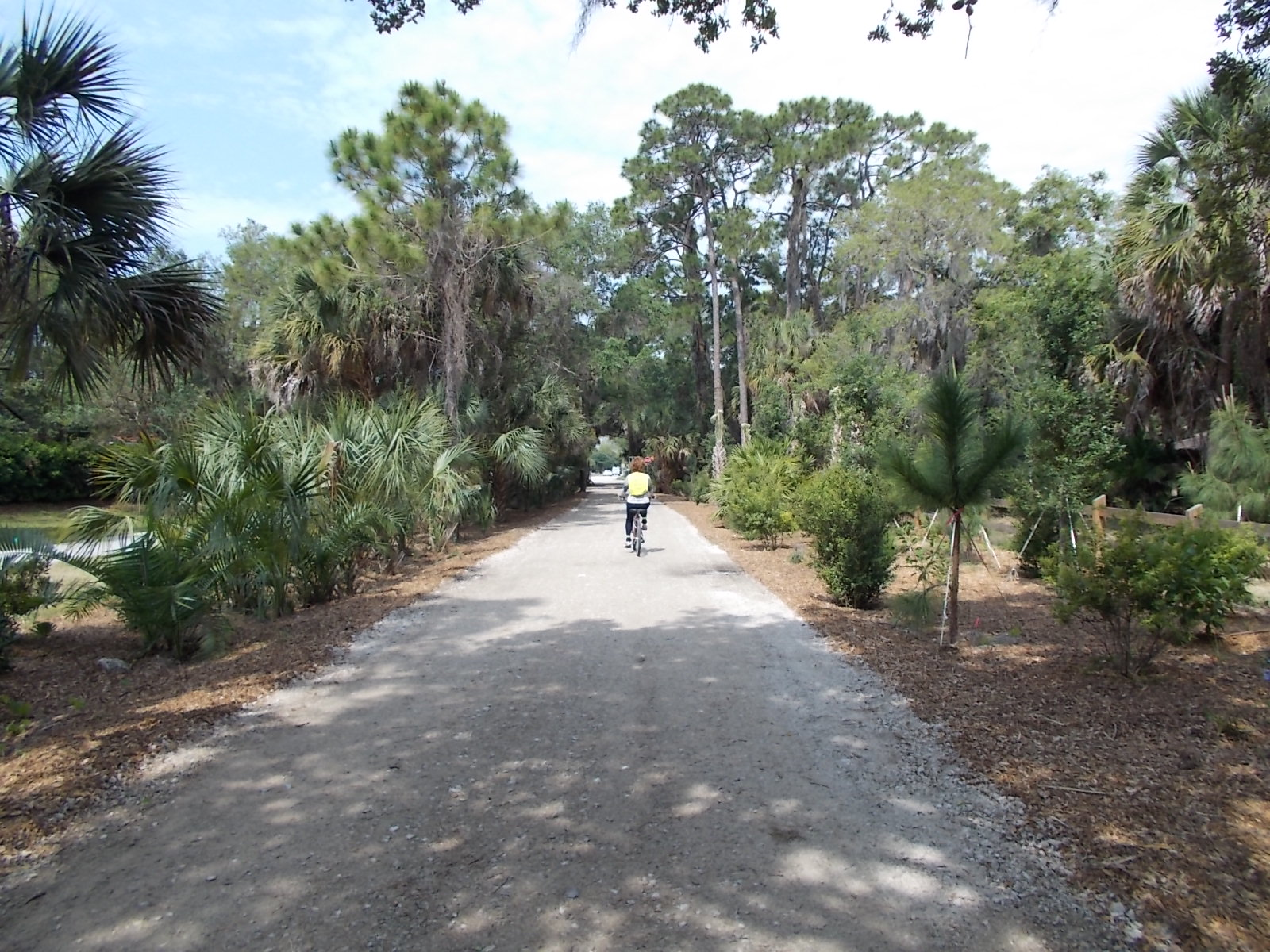 Person riding a bike along a trail in one the lovely Sarasota County natural parks
