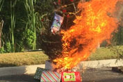 Christmas tree on fire for Fire Safety demostration