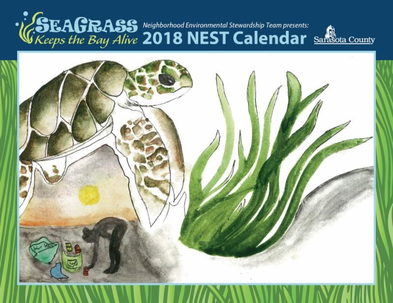 Cover of the 2018 NEST calendar Winner's picture of a sea turtle