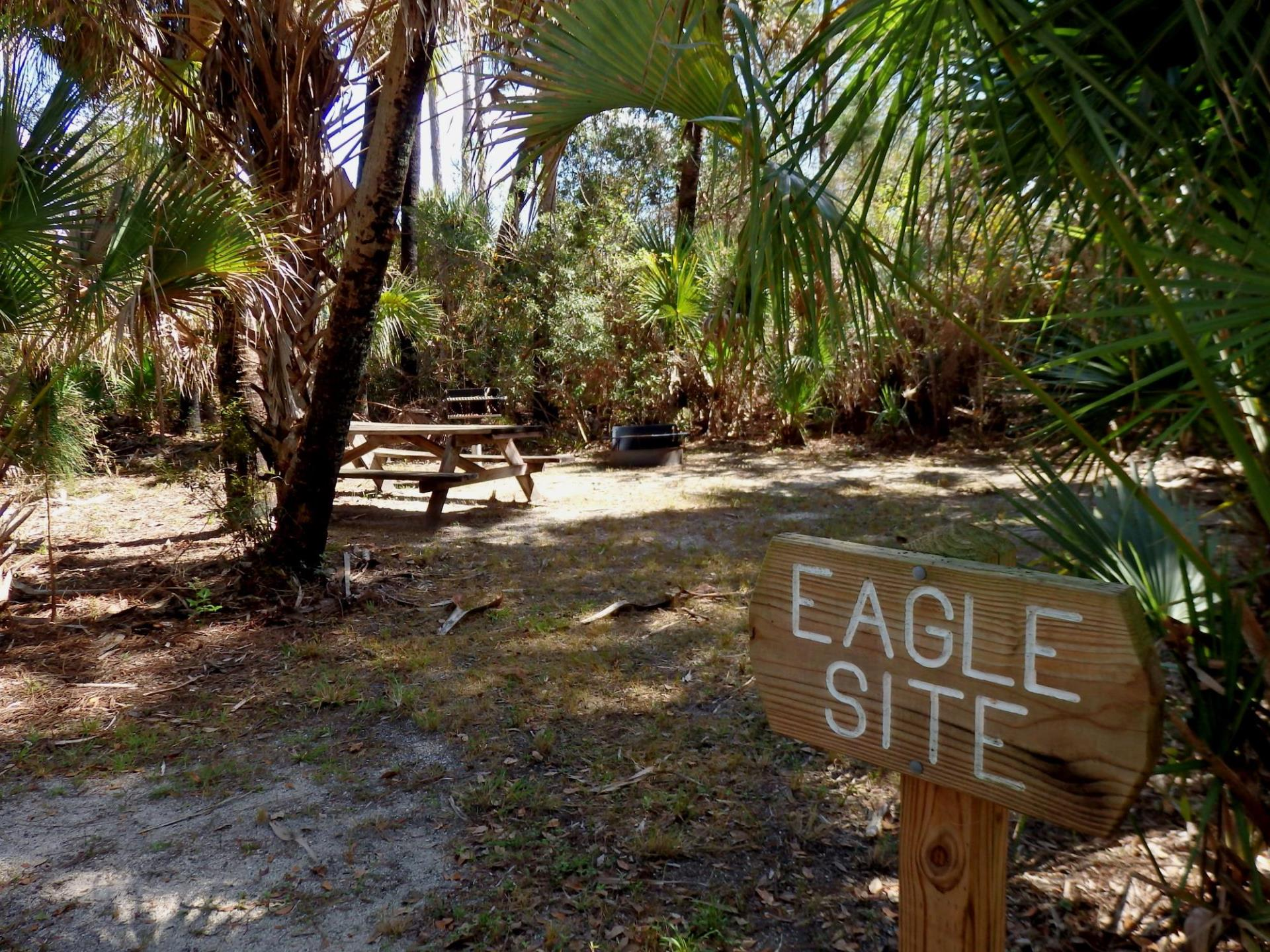 T. Marby Carlton, Jr. Memorial Reserve-Cabbage Palm Loop Eagle Site