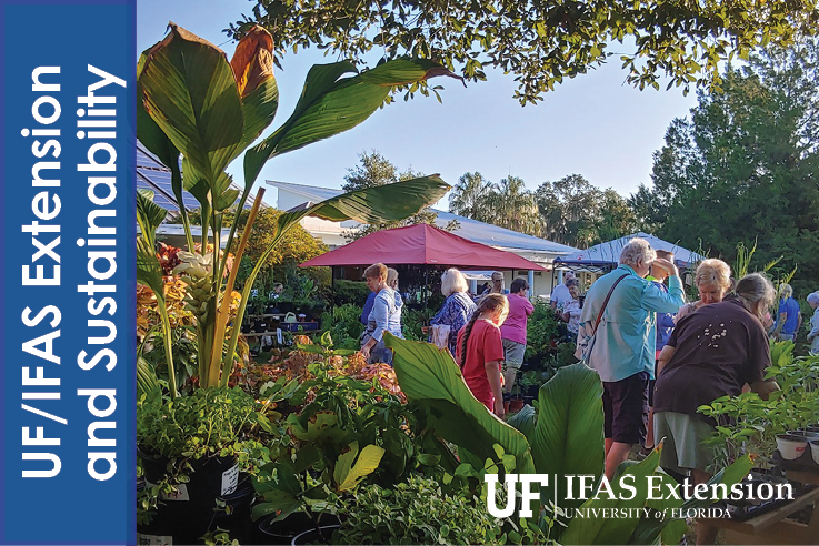 UFIFAS - Plant Sale Icon