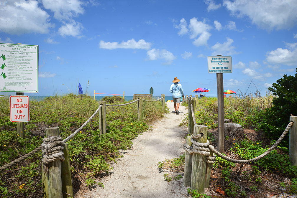Turtle Beach Campground Path To The